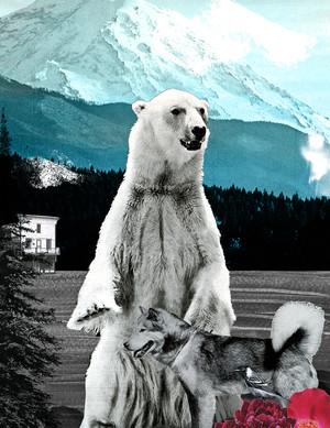 The Loving Bear