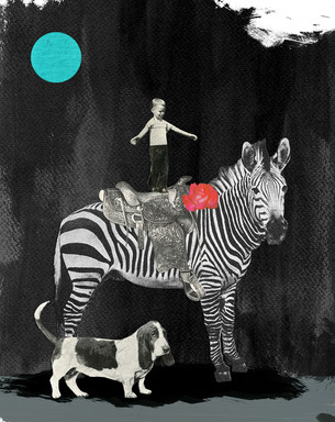 Boy and the Zebra