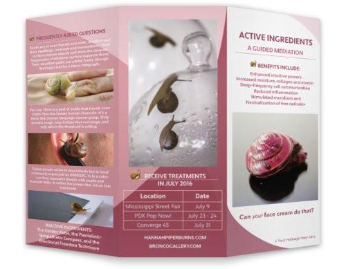 Active Ingredients Brochure 1 (outside)