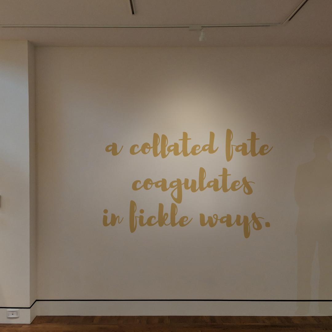Venus Retrograde (installation shot of Live, Laugh, Love)