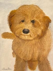 Watercolor pet painting of Rex