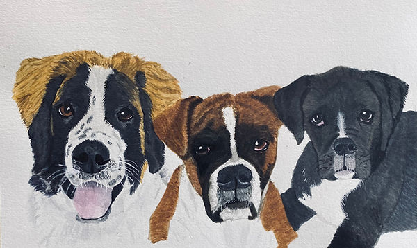 This is a watercolor painting of my three dogs