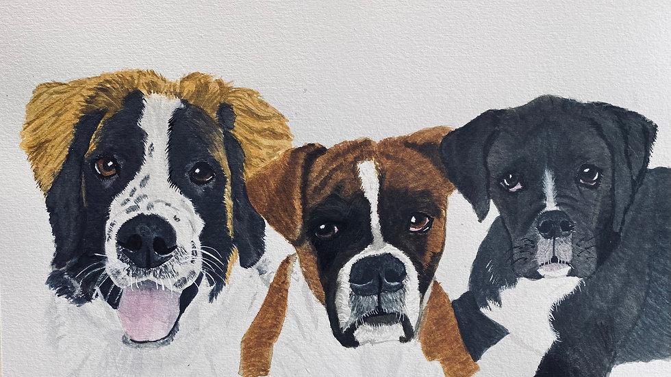 three pet watercolor pet portrait
