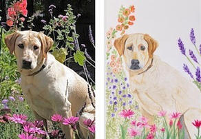 Maggie before and after