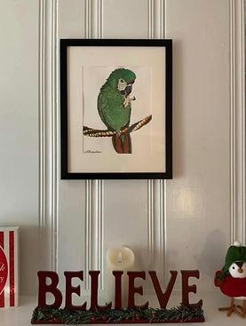 Hanging picture of Goobie