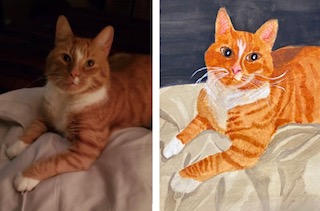 Marvin before and after