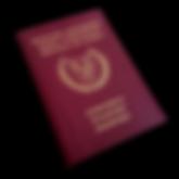 Cyprus Passport.png