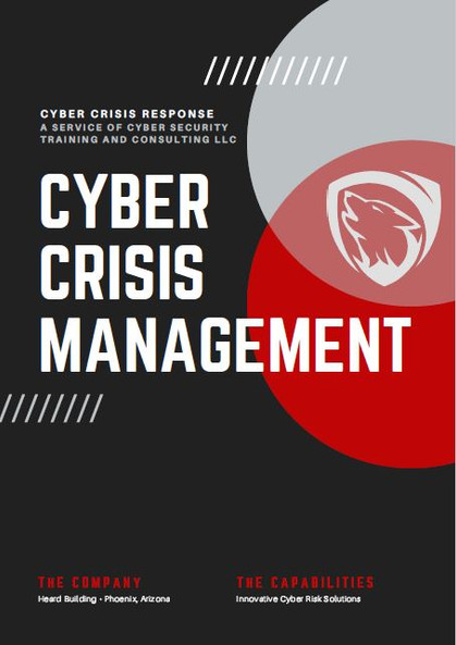 Cyber Crisis Management