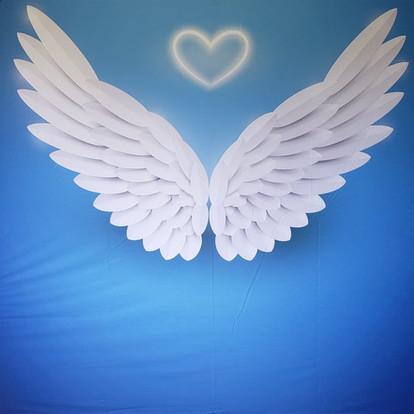 Angel Wings & Halo