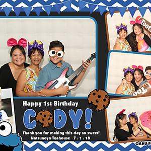 Cody's First Birthday