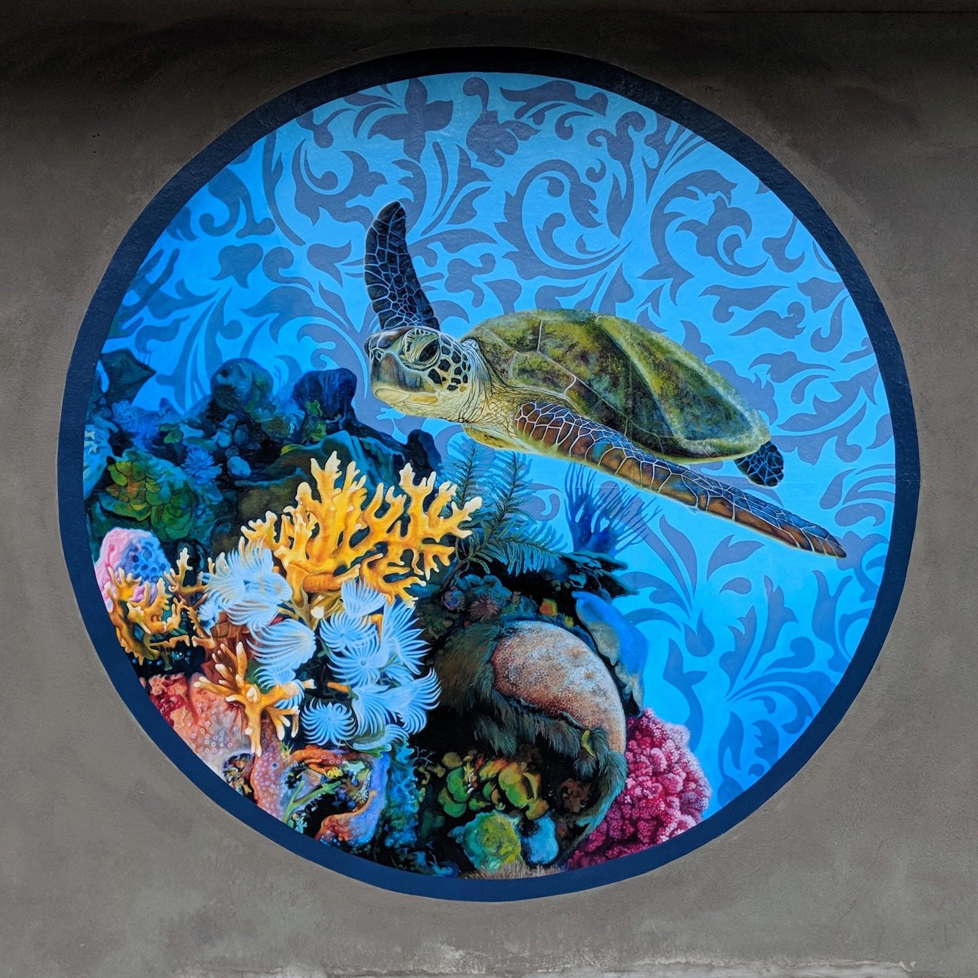 Kauai Coral Reef Life