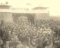Libération du camp