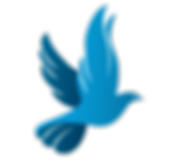 kisspng-columbidae-doves-as-symbols-logo