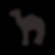 kisspng-dromedary-camel-milk-stock-photo