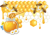 kisspng-honey-bee-honeycomb-bees-and-honey-5a9bcd7567b512.0139508815201601174248.png