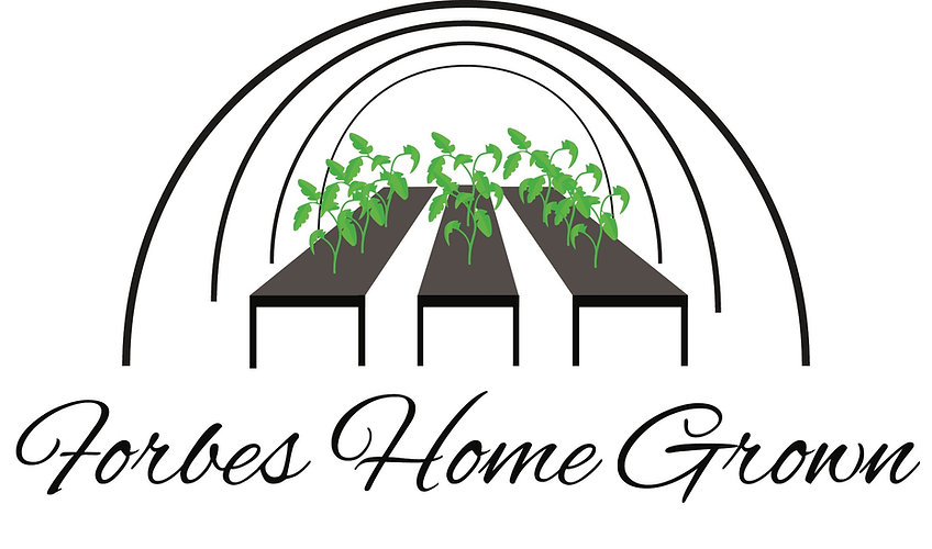 Forbes Home Grown Logo 2_edited.jpg