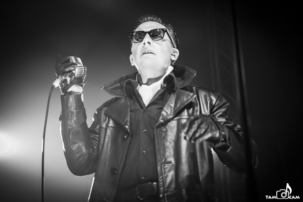 The Damned - 15