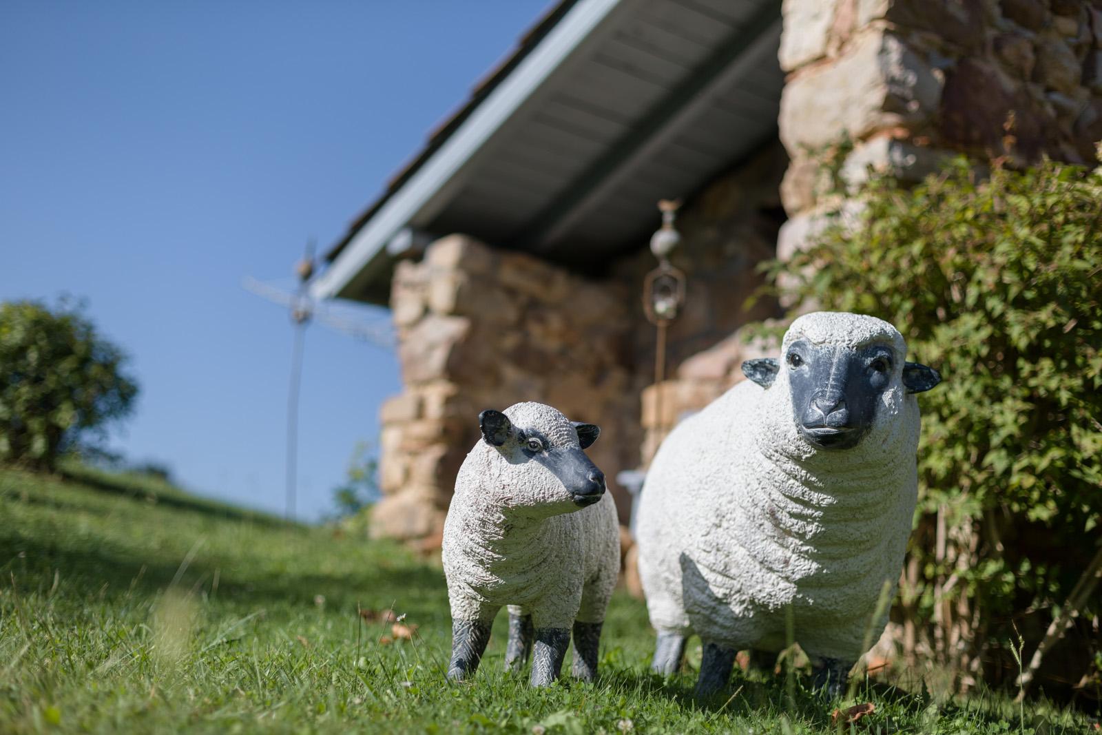 Maison d'hotes, gîtes au pays basque