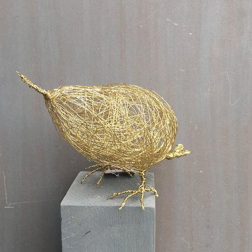drahtvogel