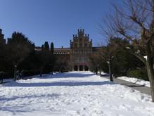 Chernivtsi National University (1875)