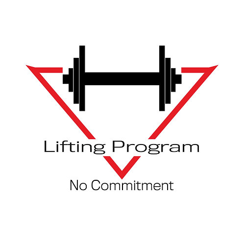 TEST DRIVE LIFTING PROGRAM