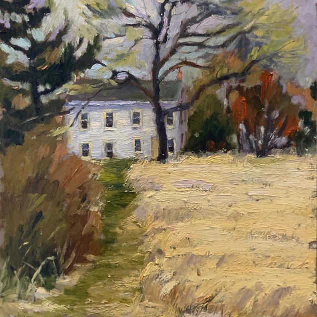 Farmhouse in Filed