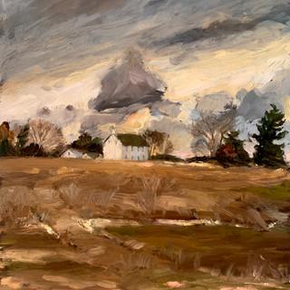 Muted Field & Skies