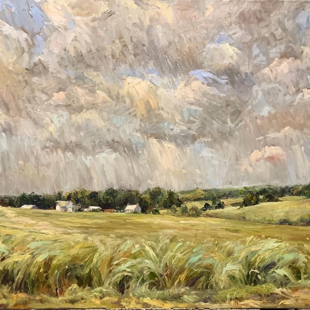 Billowing Fields