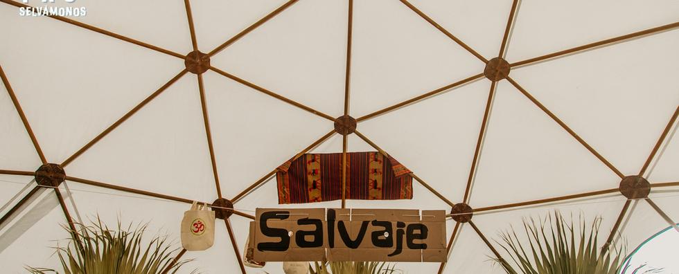 Salvaje (5).png