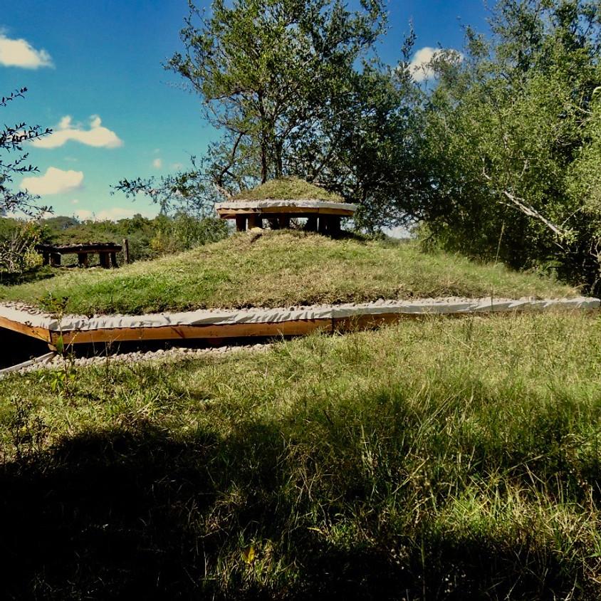 Taller de Techos Verdes en Tierra Langla