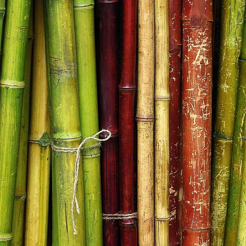 Taller de Construcción con Bambú en Chanchamayo