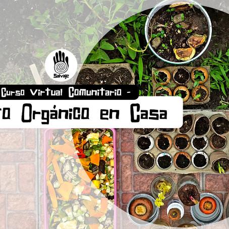 Huerto orgánico en Casa | Curso Virtual