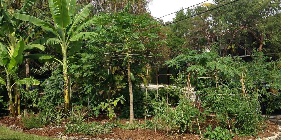 Bosques Comestibles | Implementación en Marcahuasi La Casa del Protector
