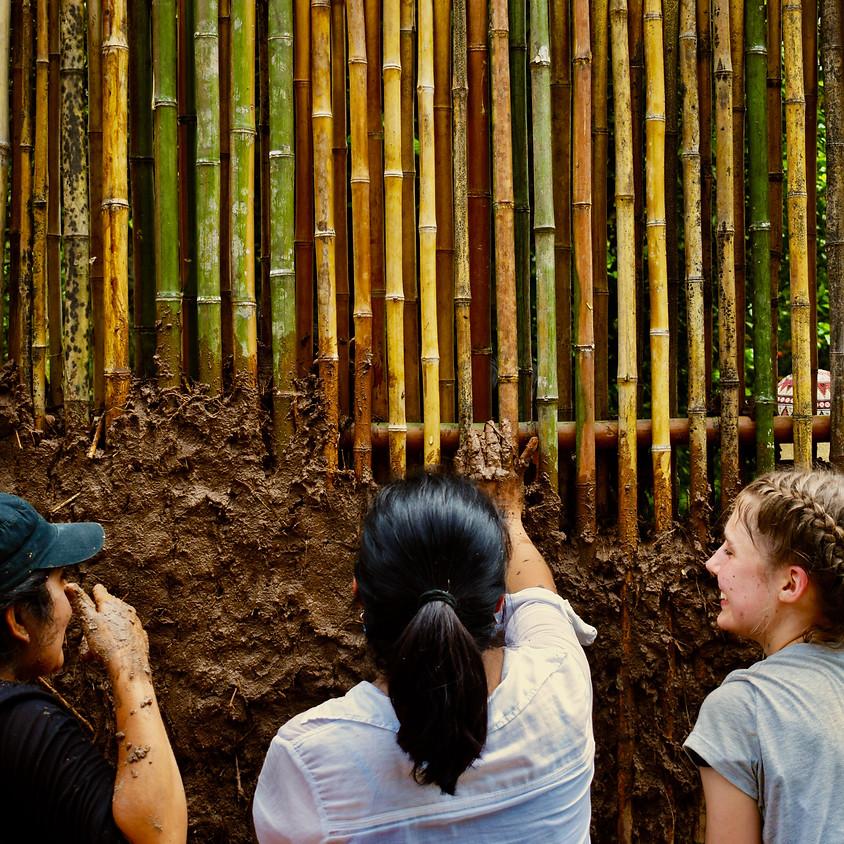 Voluntariado en Tarapoto: Construcción Natural en la Selva Peruana