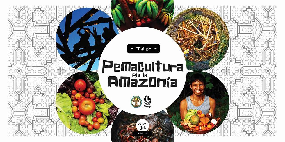Taller de Permacultura en la Amazonía