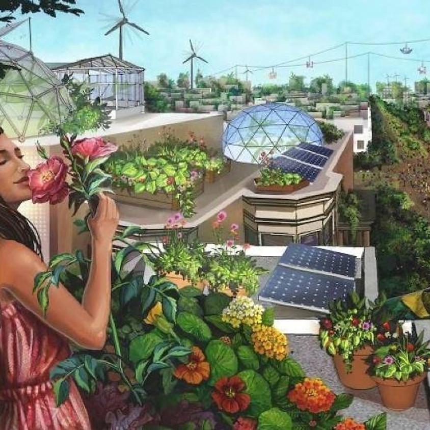 Taller de Permacultura Urbana