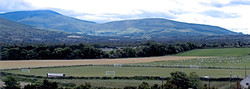 Burrin Celtic FC Grass Pitches