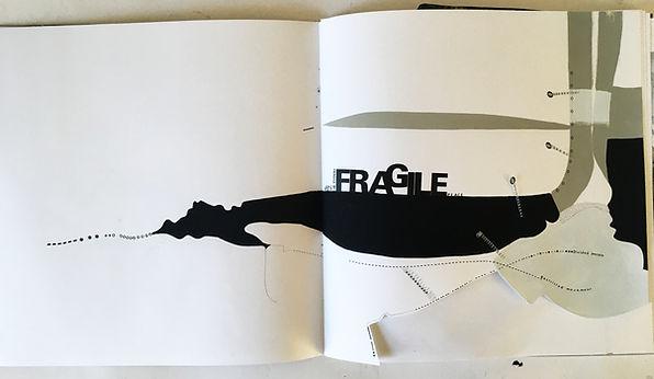 2.Fragile.jpg