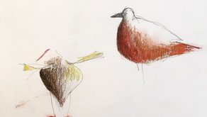 Summertime slides into autumn! Here are some of my summer workings- drawings, cut outs & prints