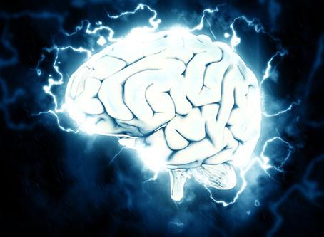 Brain Development - How Knowledge Guides Practice