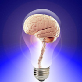 What's Going On In There? The Brain and Learning (Introduction) Berowra