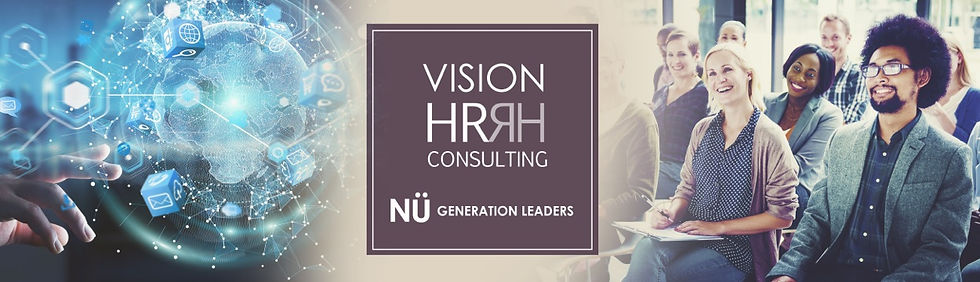 vision consulting baner
