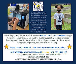 Steam Lab Online Campaing Ask -10-30-20.