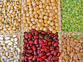 How pulses can benefit your liver health!
