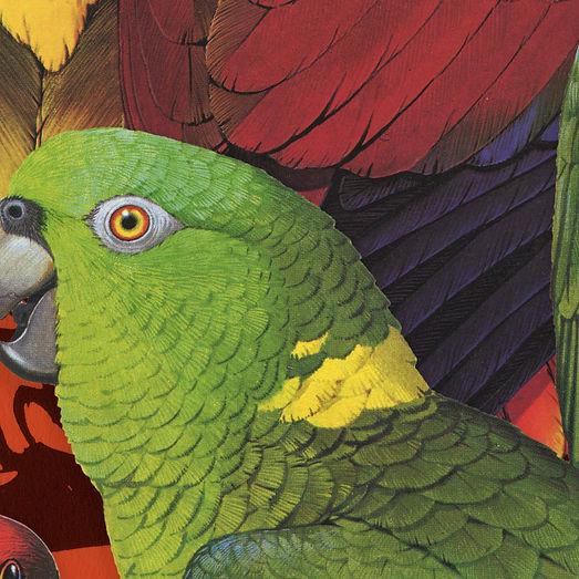 birdsofafeather_art2.jpg