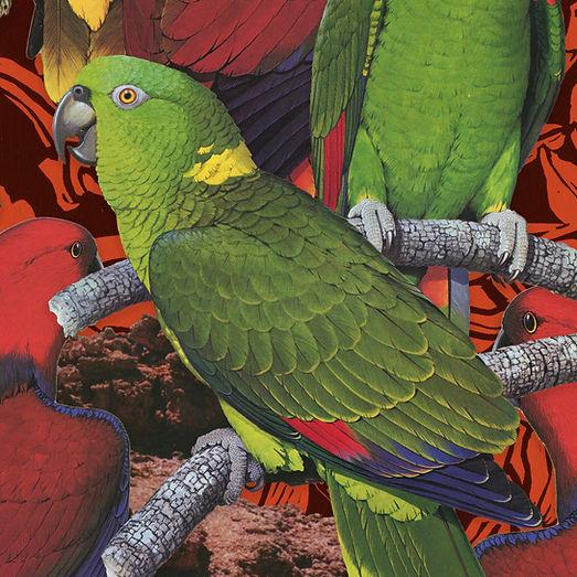 birdsofafeather_art3.jpg