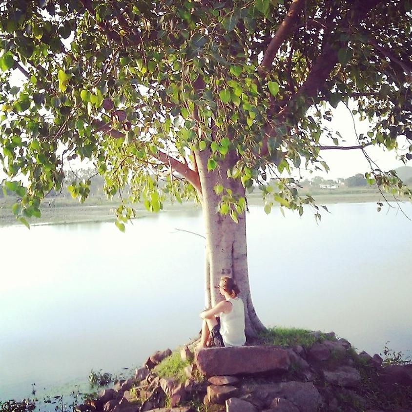 Meditatieavond (1)