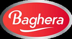 baghera-it-logo-15737233135.png