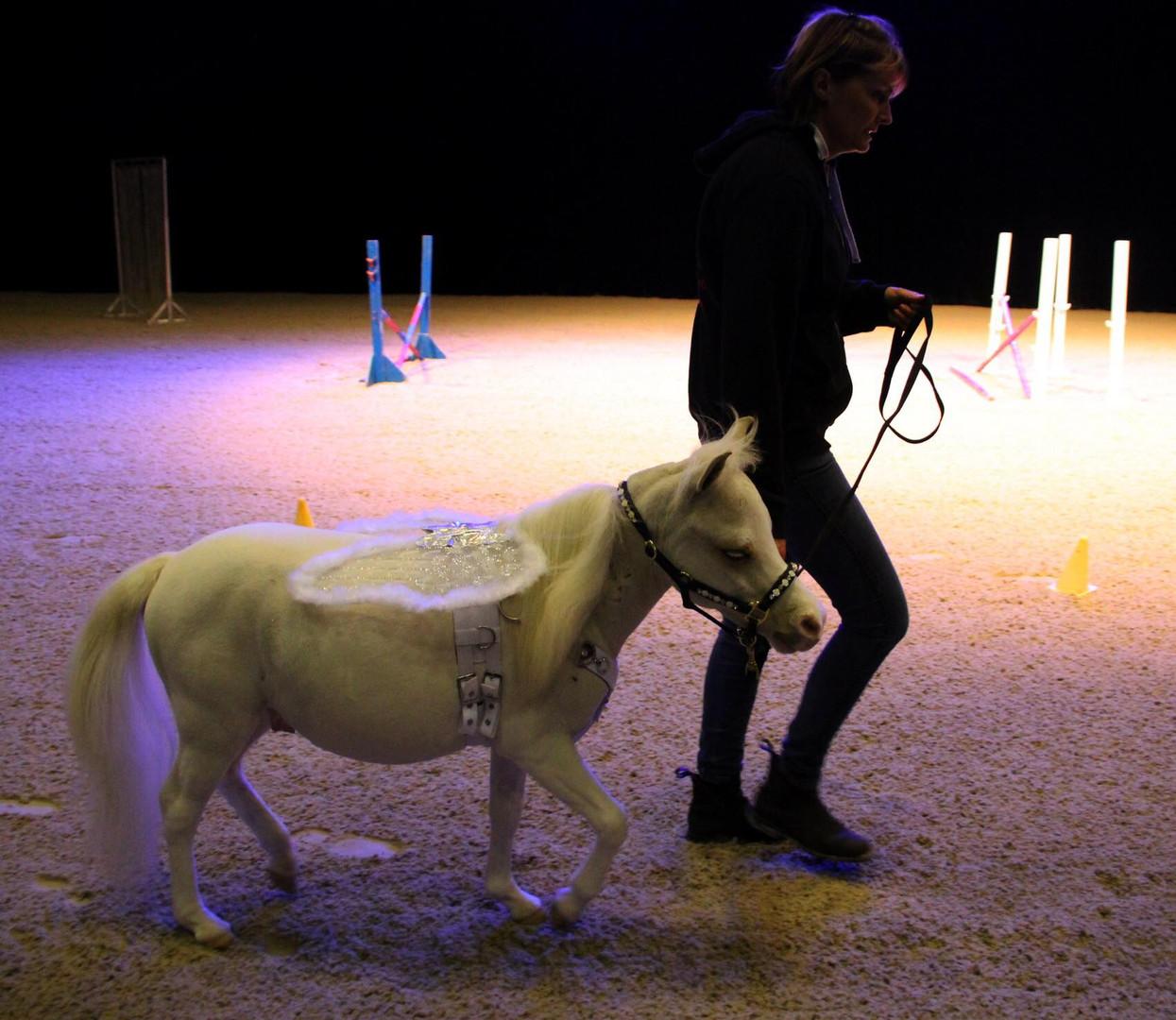 Cheval blanc LPC 2.jpg