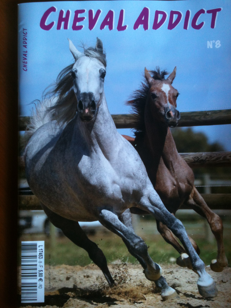 Couverture Cheval Addict n8.JPG